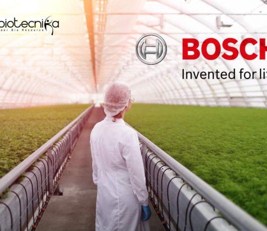 Bosch Jobs