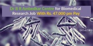 Delhi University Latest Job