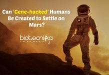 'Gene-hacked' Humans on Mars