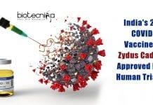 Zydus Cadila's COVID19 Vaccine