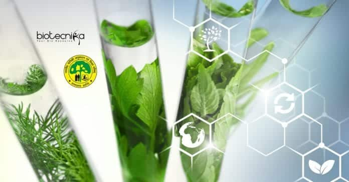 Govt ICFRE Biotech Research
