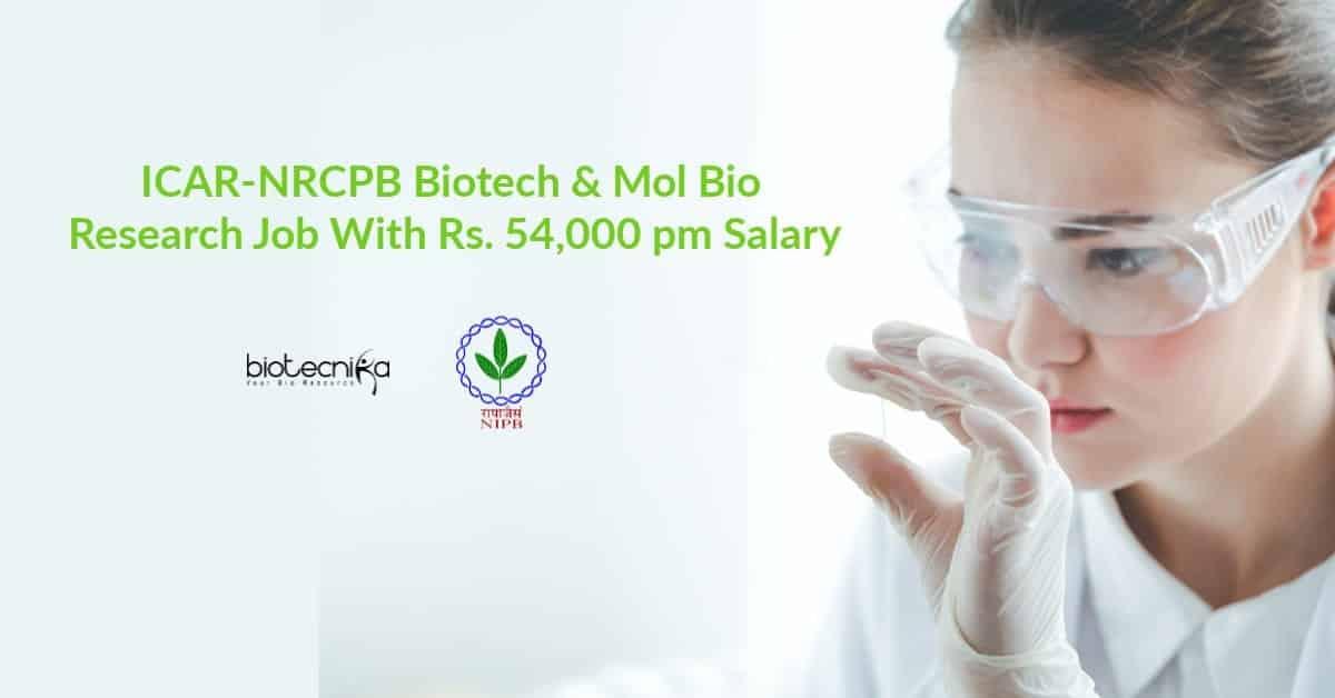 ICAR-NRCPB Research Jobs MSc