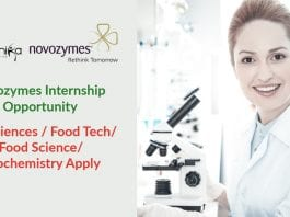Novozymes Latest Jobs