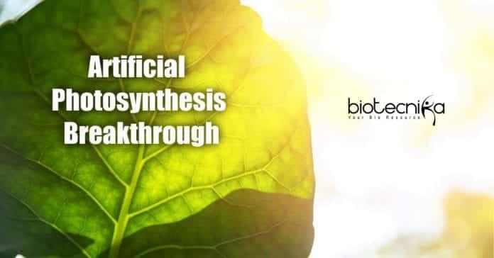 device to produce energy like plants