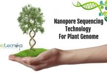 Nanopore genome sequencing technology