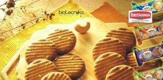 Britannia Industries Food Technology