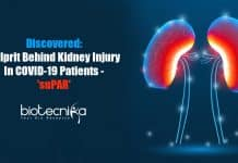 suPAR - culprit behind kidney injury