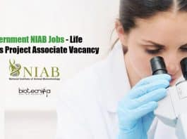 Government NIAB Jobs