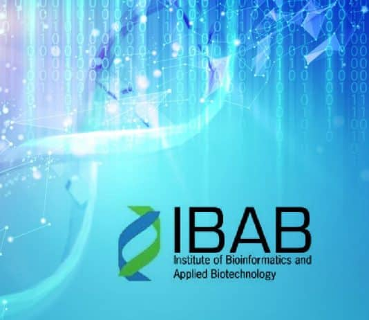 IBAB Research Positions