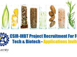 IHBT Food Tech Jobs