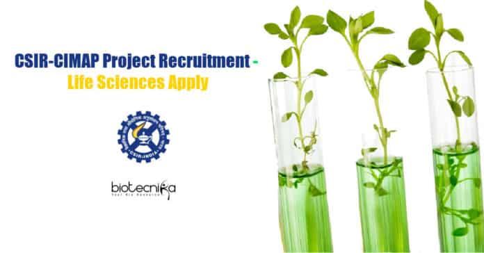CIMAP Latest Vacancies