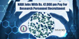 NABI Research Vacancies