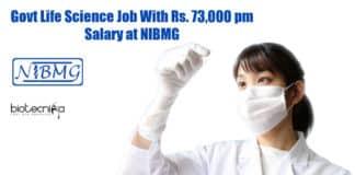 NIBMG Vacancies
