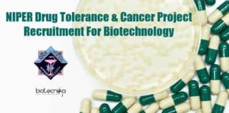 NIPER Biotechnology Job
