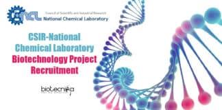 NCL Pune Project Job