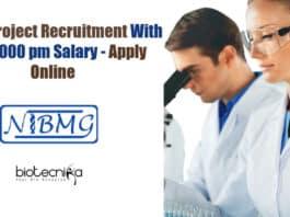 NIBMG Project Jobs