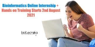 Bioinformatics Internship Online